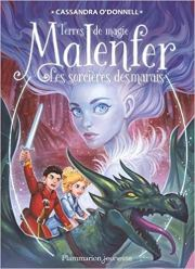 Tome 4 - Les sorcières des marais